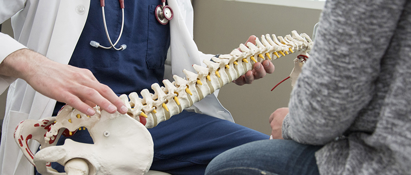Fun Facts About Bones and Joints