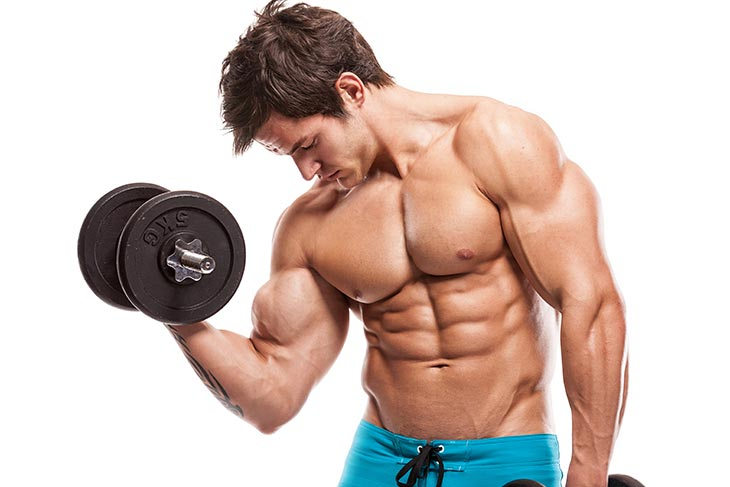 WHAT MUSCLE GROUPS TO WORKOUT TOGETHER?