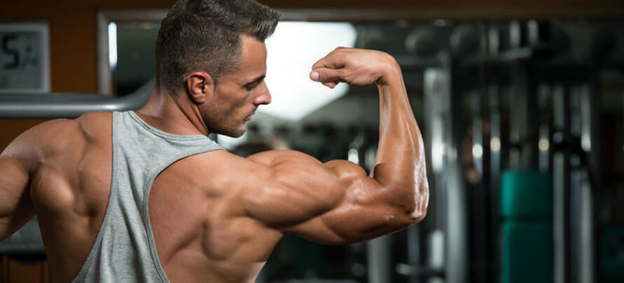 Eight Tips to Help you build Muscle Mass