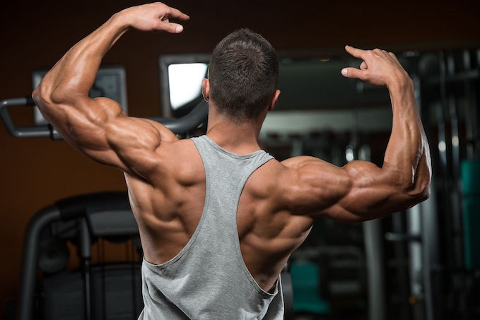 Muscular Hypertrophy and Your Workout