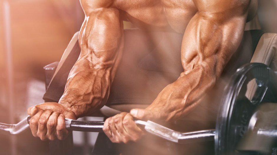 15 EXERCISES TO MAKE YOUR FOREARMS BIGGER AND STRONGER