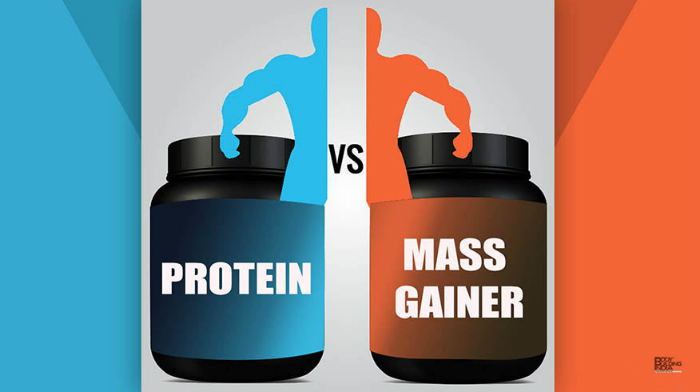 Which Should I Choose: Mass Gainer or Whey Protein?