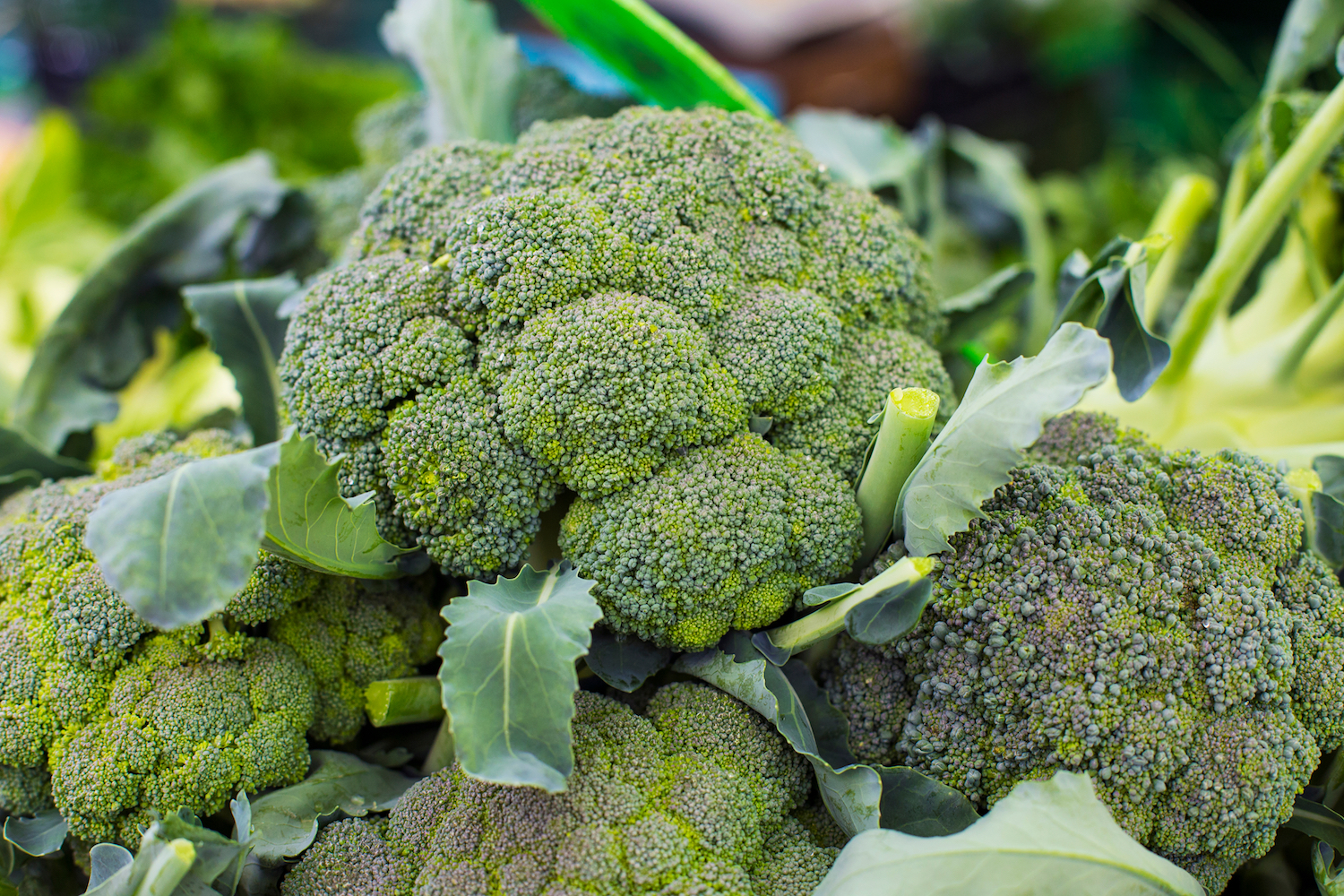 Broccoli: Health Benefits, Risks and Nutrition Facts