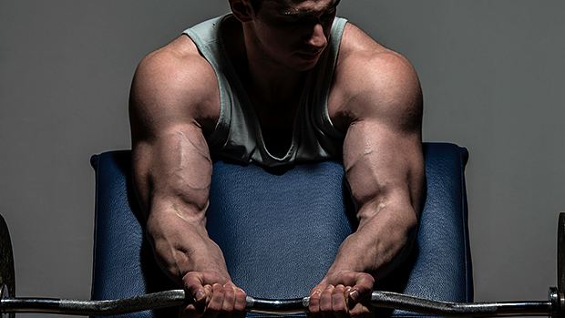 An Introduction To A Hardgainer Bulking Diet