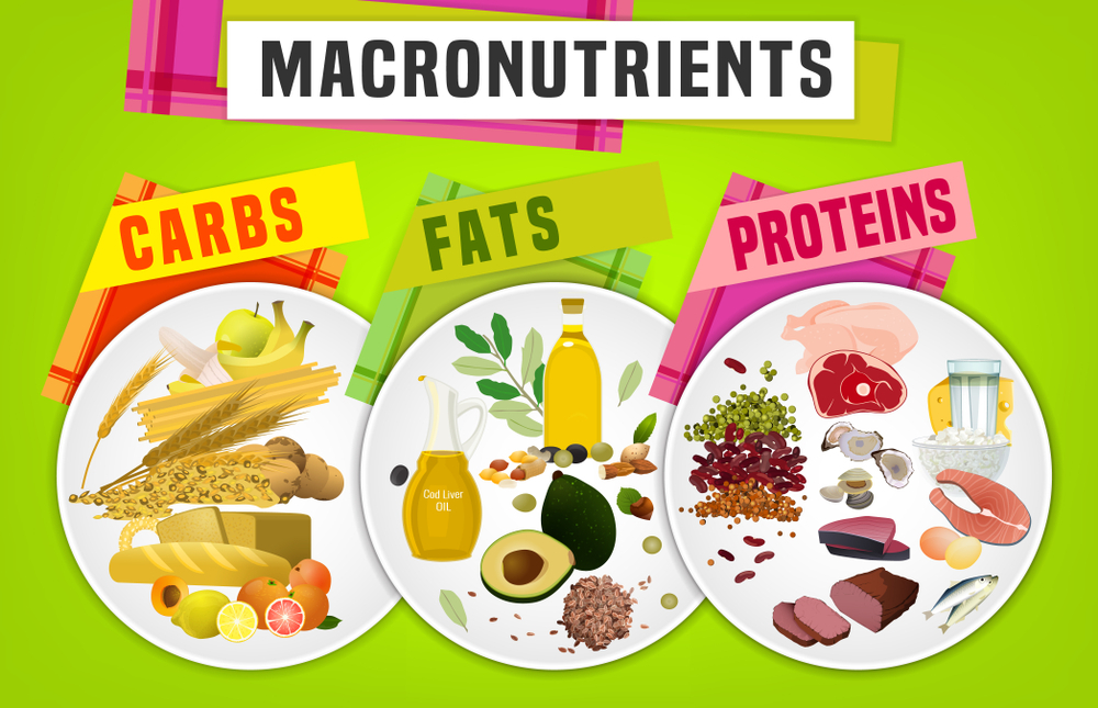 What's the Difference Between Micronutrients and Macronutrients?
