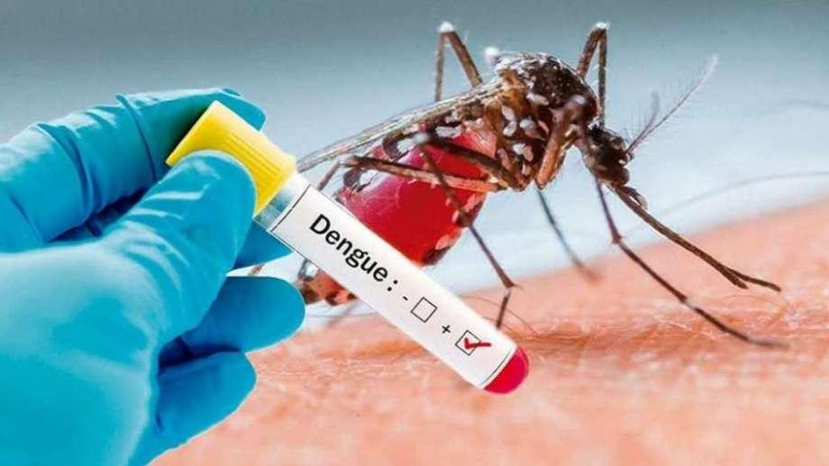 Dengue Tests: How to diagnose dengue fever